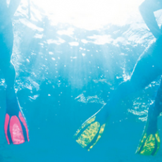 Win a Scuba Diving Session for Two!