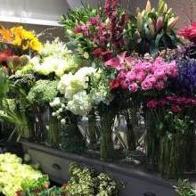 Best Manchester Florists for Valentine's Day
