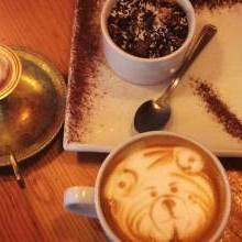 Best cafes on Stokes Croft, Bristol