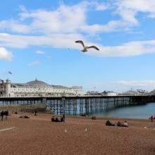 The Best Music Venues in Brighton
