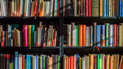 Collection of books on shelves
