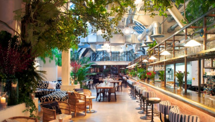 Wild by Tart restaurant interior